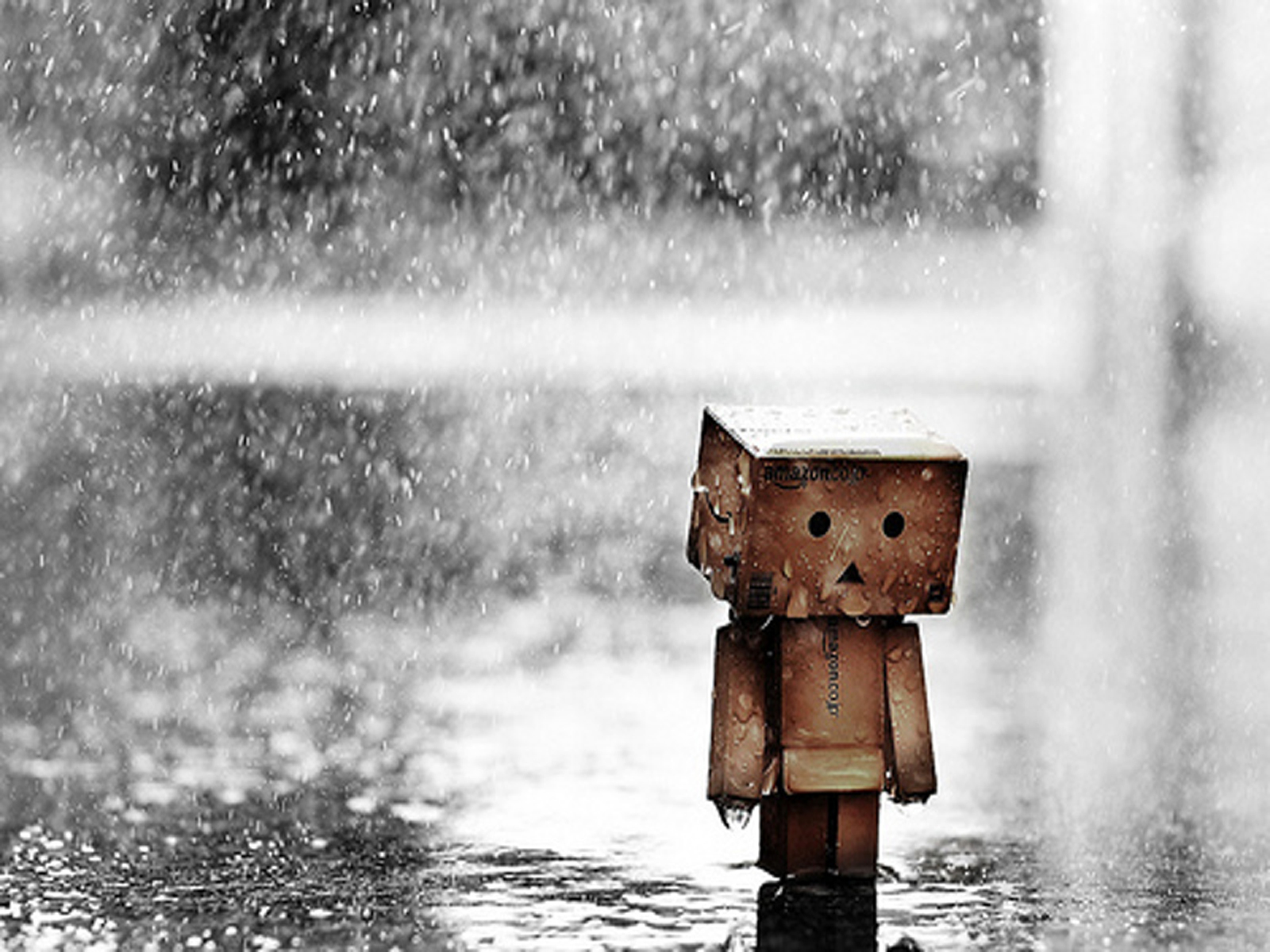 http://up2www.com/uploads/f48528_14danboard-boxman-kutu-adam-rain-cry-w%D8%B2ww-vvallpaper-net.jpg